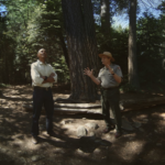 Watch Yosemite Tour With Obama In Virtual Reality